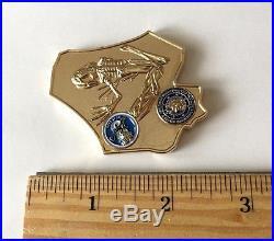 Navy Seals Special Warfare Nsw Team 2 Wali Kot Frog Challenge Coin Skull No Cpo